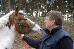 Dulig mit Pferd